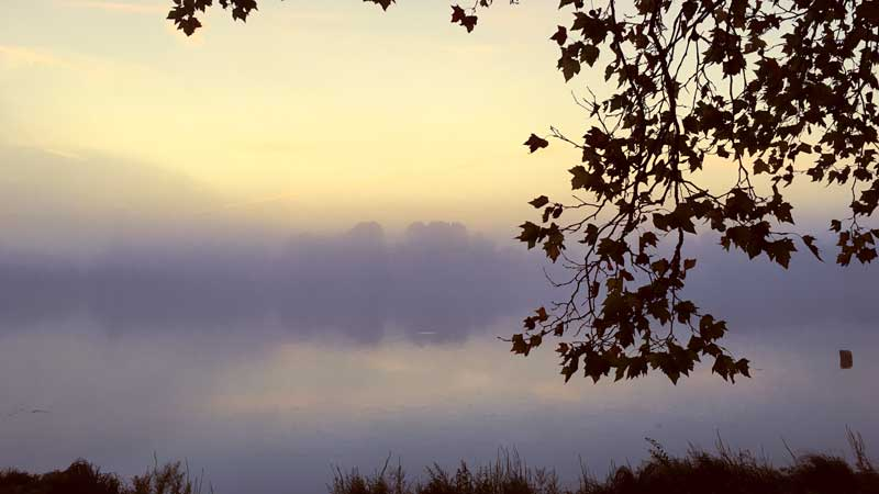 Morgens ist jetzt jetzt kühl und neblig an der Saône