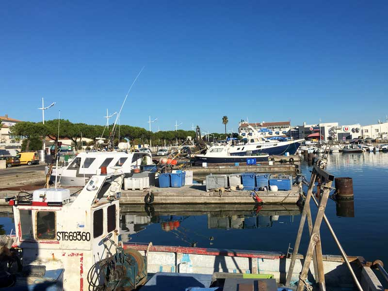 Le Grau-du-Roi hat einen ziemlich großen Fischereihafen