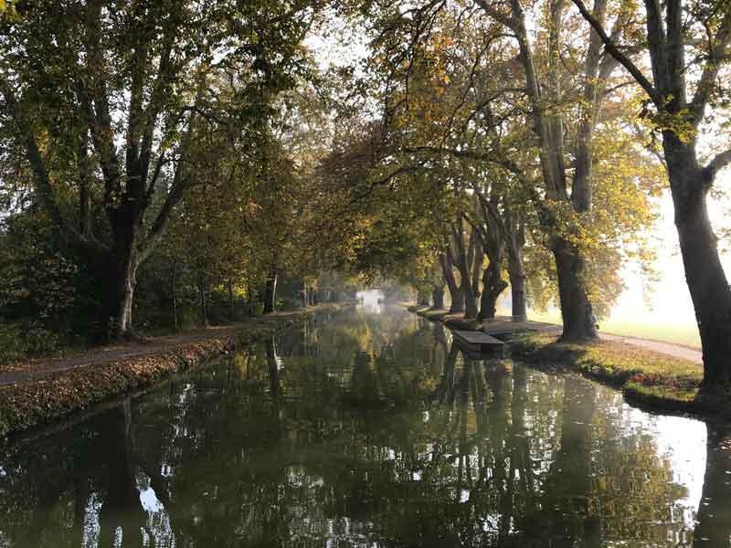 Wunderschöner Naturanleger auf dem Canal du Rhône au Rhin bergwärts hinter Dole