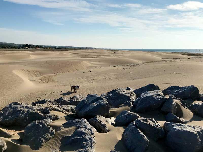 Gruissan Ayguades: toller Strand mit Dünen