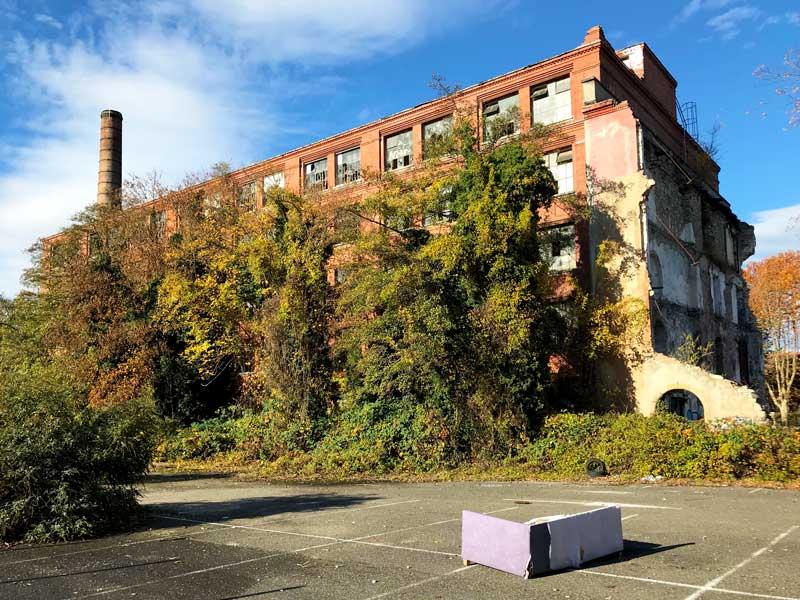 Die Gebäude auf dem alten DMC Areal in Mulhouse sind zum Teil völlig überwuchert