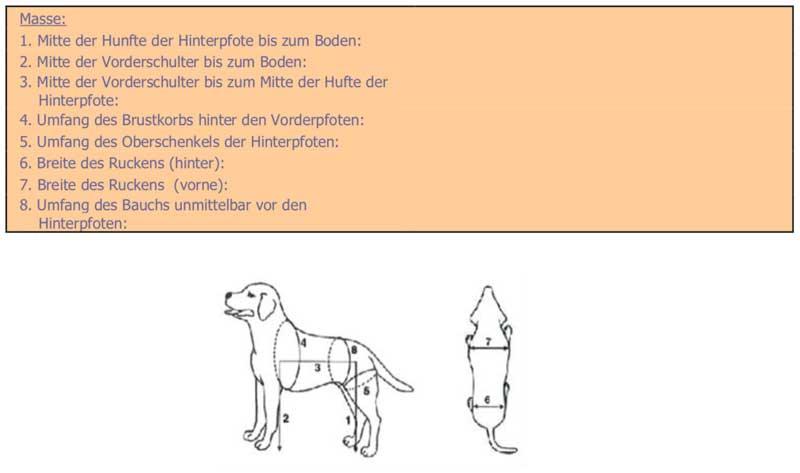 Nicht zu 100% einleuchtend sind die Anweisungen zum Abmessen des Hundes