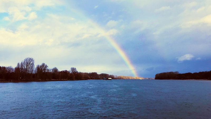 Ein Regenbogen spannt sich über den Rhein