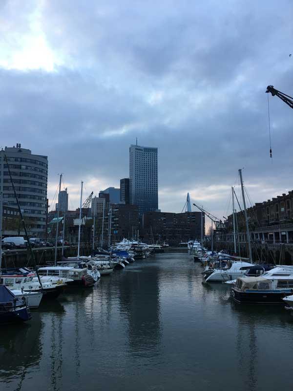 Hinter dem Entrepothaven sieht man den Maastoren und die Erasmusbrug