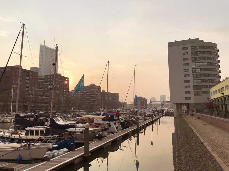 Milchiges, rosafarbenes Licht beim Sonnenuntergang über der Rotterdam City Marina