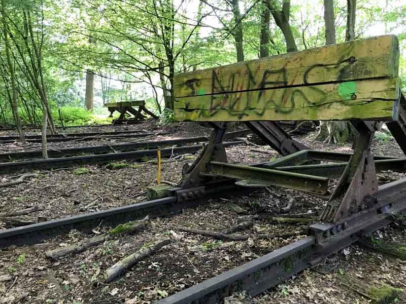 In Hiltrup bei Münster sind die alten Gleisanlagen völlig vom Wald überwuchert; die Rammböcke an den Gleisenden stehen noch
