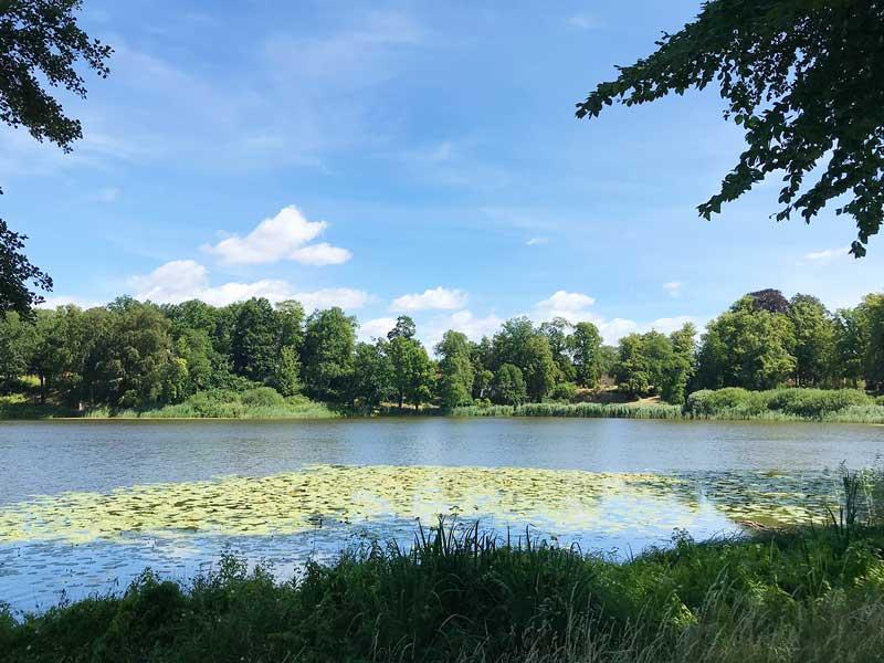 Haussee: Romantischer kleiner See mit Seerosen im Schlosspark Petzow, Werder Havel