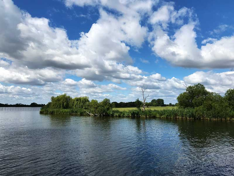 Grünes Ufer der Potsdamer Havel zwischen Ketzin und Werder