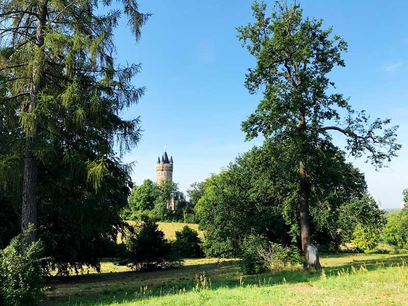 Flatowturm auf einem Hügel mit Bäumen im Park Babelsberg am Tiefen See in Potsdam