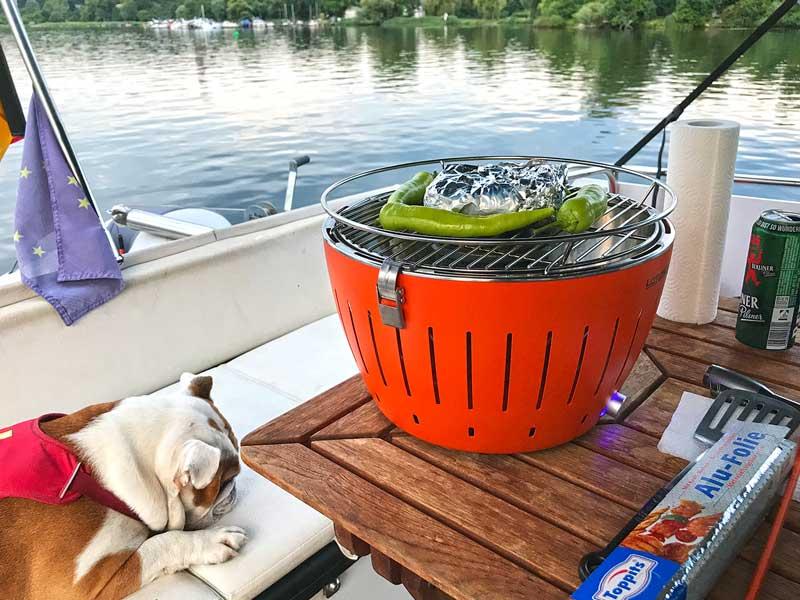 Englische Bulldoge liegt auf der Bank neben einem Tisch mit Lotus Grill und Grillgut mit Blick auf Tiefer See in Potsdam an der Havel