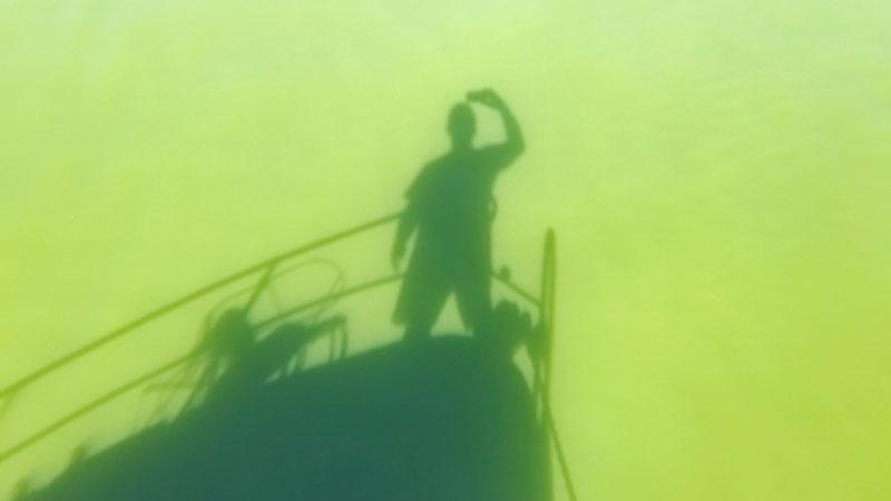 Schattenbild von Boot und Mensch auf der Wasseroberfläche eines von Blaualgen grün gefärbten Gewässers