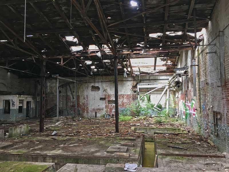 In der Maschinenhalle neben dem wasserturm der Landesirrenanstalt Teupitz, Brandenburg, südlich von Berlin, breitet sich schon Grünzeug aus, weil das Dach teilweise eingestürzt ist - Lost Places