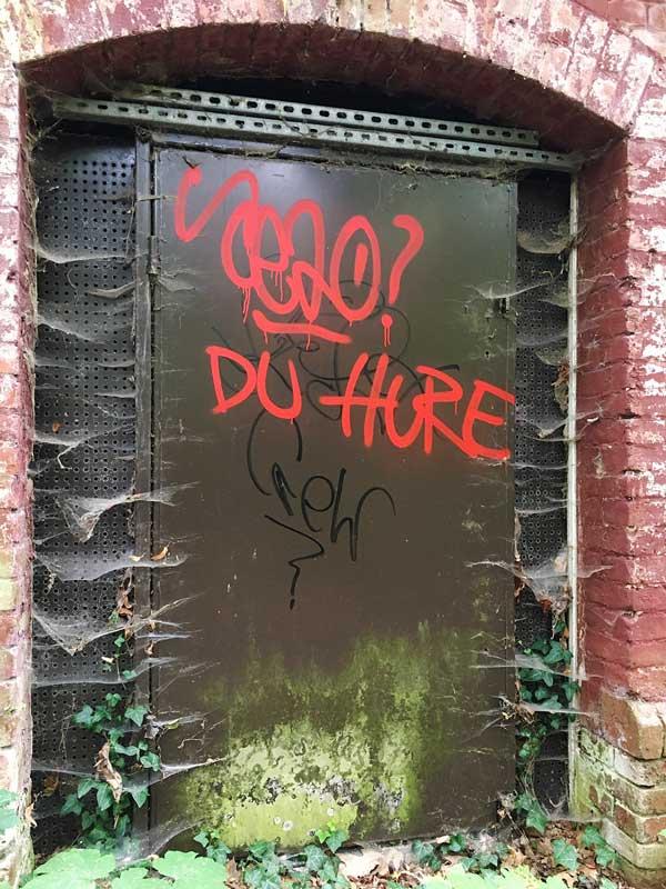 """Alte Stahltür voller Spinnweben, mit einem Grafitto """"DU HURE"""" besprüht, in der Landesirrenanstalt Teupitz, Brandenburg, südlich von Berlin - Lost Places"""